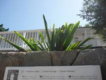 Le presbytère catholique de Gustavia a mauvaise plaque